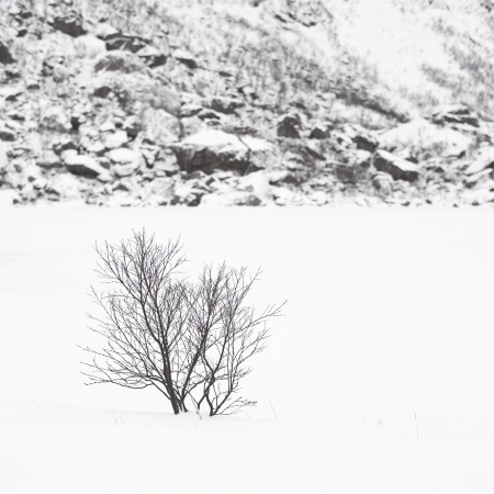 Troms5